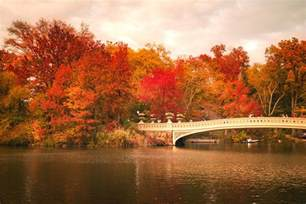 Duvet New York New York City In Autumn Central Park Photograph By
