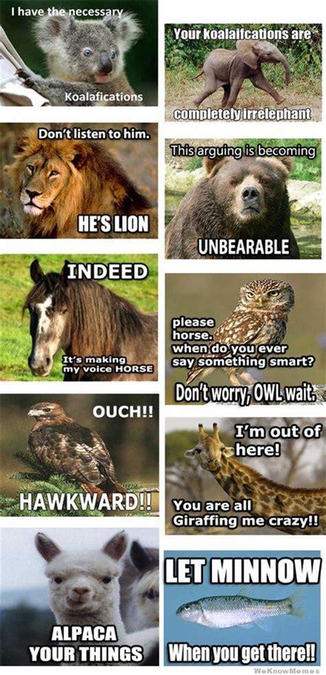 Animal Pun Memes - animal pun memes