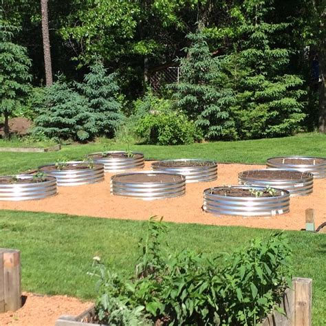 tractor supply raised garden beds 96 best images about garden galvanized raised gardens