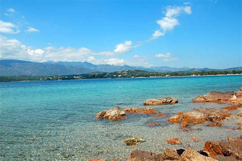 in corsica corsica villa for 6 to rent near palombaggia