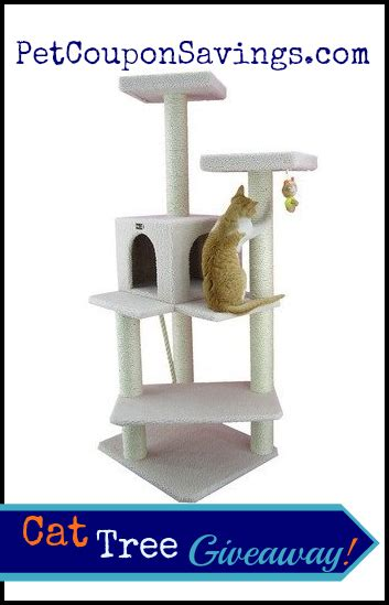 Cat Giveaway - cat tree furniture condo giveaway