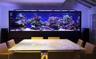 In Wall Toilet Tank Luxurious Custom Made Aquarium Aquarium Architecture