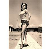 297 Best Images About Sophia Loren On Pinterest  Clark