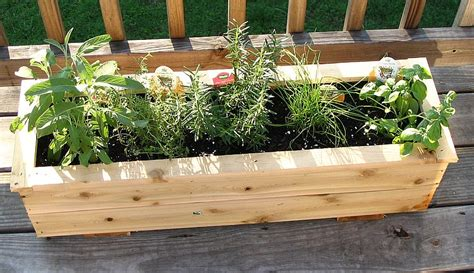 herb boxes nuttnhoney s garden