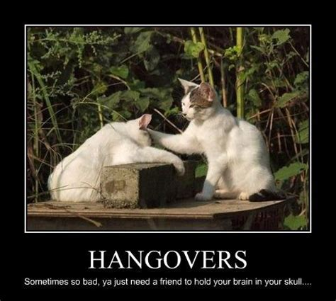 Funny Hangover Memes - memes running from prozac