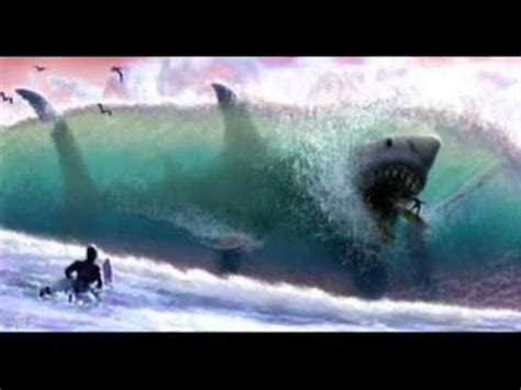 megalodon sharks still lives evidence that megalodon is not extinct the megalodon still alive youtube