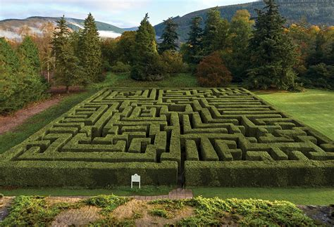 maze house discover some of the best mazes in the uk the english garden