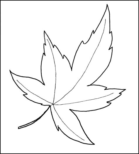 pattern templates leaf template printable leaf templates free premium