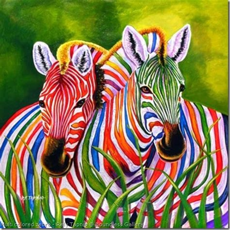 wallpapers of colorful animals colorful zebra pictures funny animal