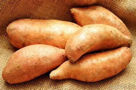 carbohydrates yams what are yams with pictures