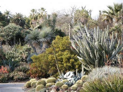 the huntington botanical gardens house encyclopedic collection of desert plants inhabitat