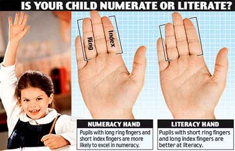 celebrity meaning with exle finger length 2d 4d digit ratio indicator for maths