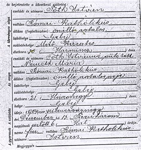 Birth Records Ancestry Hungarian Genealogy It All Goes Back To The