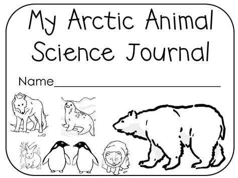 Antarctic Animals Coloring Pages arctic animals black and white clipart clipartsgram