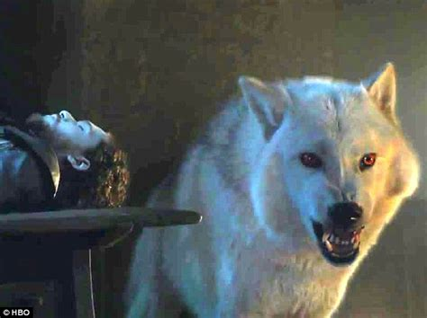 ghost actor game of thrones game of thrones clip sees davos and ghost fight over jon