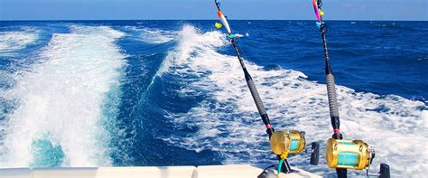 fishing boat blue book blue reef fishing charters