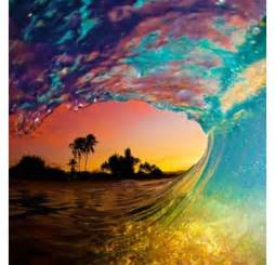 pretty trees palm trees pretty summer wave image