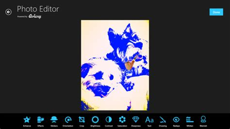 Aviary Photo Editor Online | aviary photo editor free download