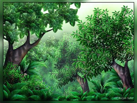 jungle clip clipart jungle dothuytinh
