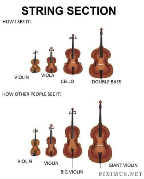 string section instruments normal people vs me fun