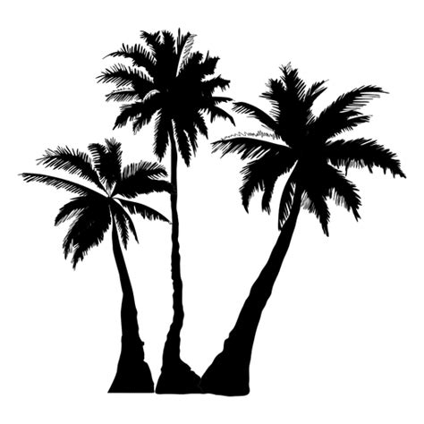 palm tree svg palm palm tree tree silhouette transparent png svg vector