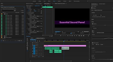 adobe premiere pro audio effects how to mix audio with the adobe premiere pro essential