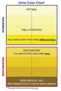 normal urine color colors in the urine and their meaning healthy tactic