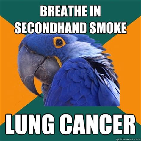 i breathe you in with smoke in the backyard lights breathe in secondhand smoke lung cancer paranoid parrot