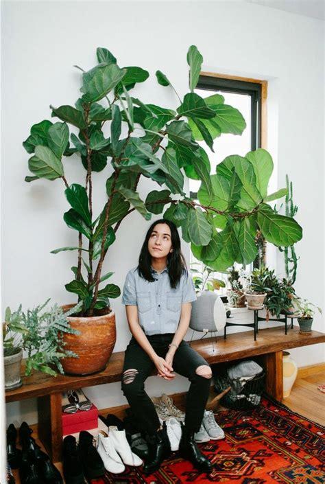 Pot Pour Plante Verte by La Fabrique 224 D 233 Co Plantes G 233 Antes Dans La Maison Une