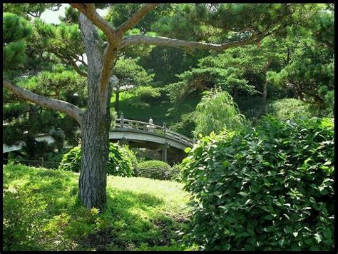 botanic gardens glencoe illinois here in illinois
