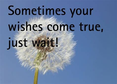 wishes quotes sometimes your wishes come true just wait