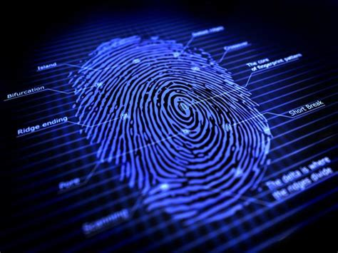 What Is Live Scan Background Check Paschal Security Livescan Fingerprinting