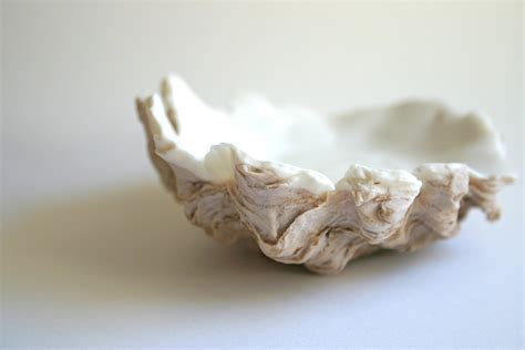 oyster shell edible oyster shells chocolate in a half by