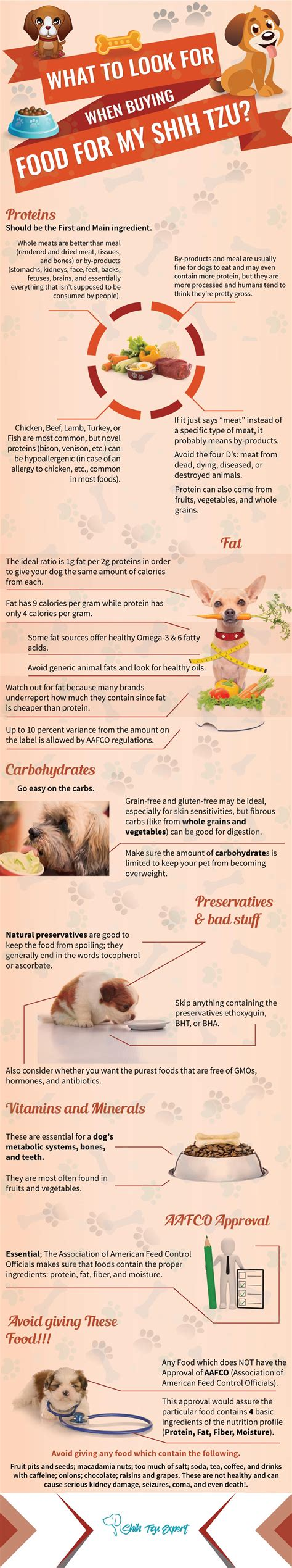 recommended food for shih tzu what to look for when buying food for a shih tzu infographic