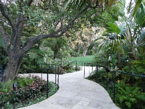 garden near lobby picture of hotel bel air los angeles