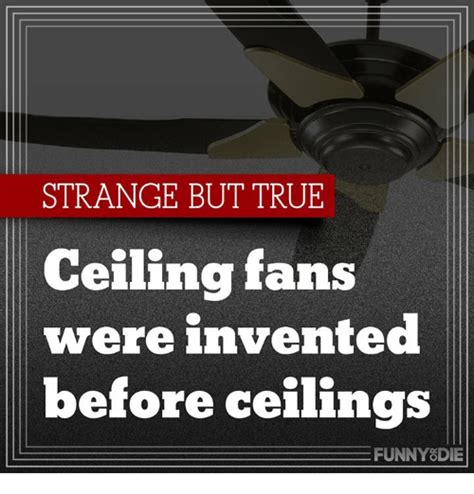 Who Invented The Ceiling Fan Gradschoolfairs Com