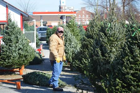 alan anderson christmas trees trees owensboro ky