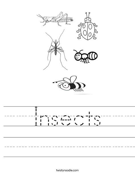 kids bug and insects worksheets insects worksheet twisty noodle