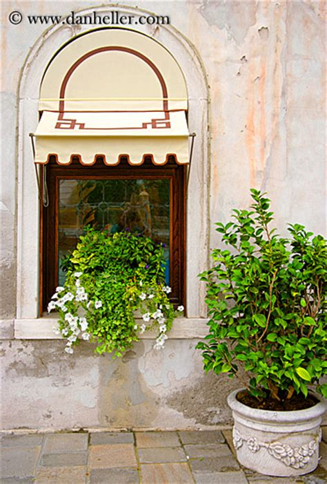 Window Potted Plants Window And Potted Plant