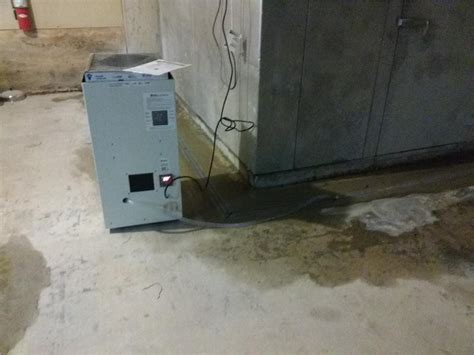 basement moisture removal in parsippany