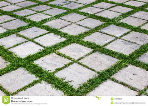 grass pattern vinyl flooring concrete with grass floor stock photo image of gray
