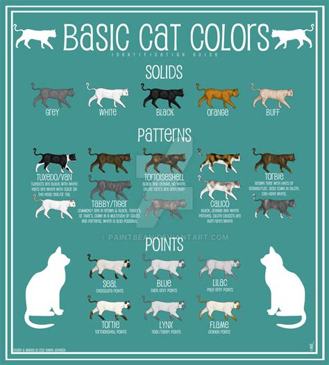 what color are cats cat color chart by paintbean on deviantart