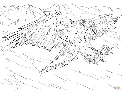 coloring page golden eagle golden eagle attacks coloring page free printable
