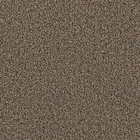 home decorators collection carpet sle palace ii