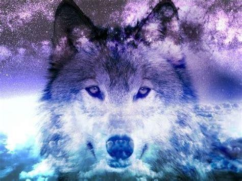 google themes wolf 97c37a53054f1775742d336ec2525247 google search