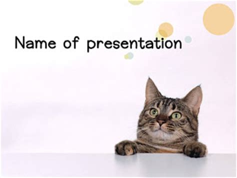 Cat Powerpoint Template 11 แจก Powerpoint Template สวยๆ Cat Powerpoint Template