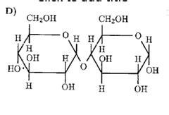 carbohydrates quizlet biochemistry biochemistry carbohydrates flashcards quizlet