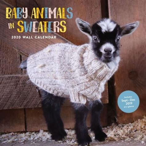 baby animals  sweaters  wall calendar