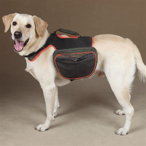 gear dogs guardian gear backpack green baxterboo