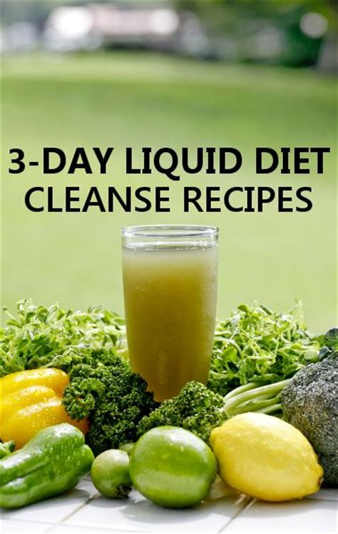 Detox Liquid Diet For 3 Days by Top 8 Ideas About Need To Try On 3 Day